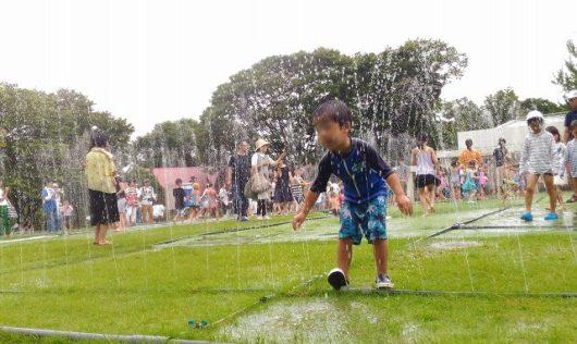 広島市植物公園 噴水迷路 (3)