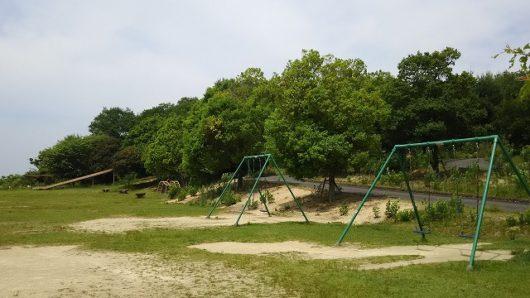 中央森林公園 ピクニック広場4