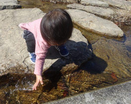 春日野中央公園 水遊び