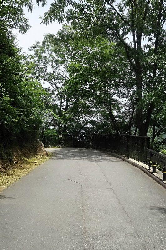 竹田城への道