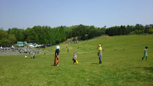 備北丘陵公園 芝生