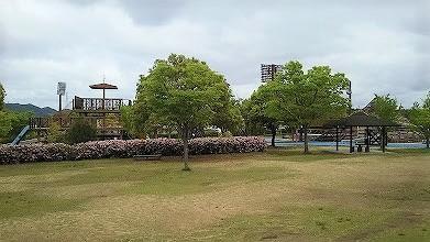 びんご運動公園 芝生広場
