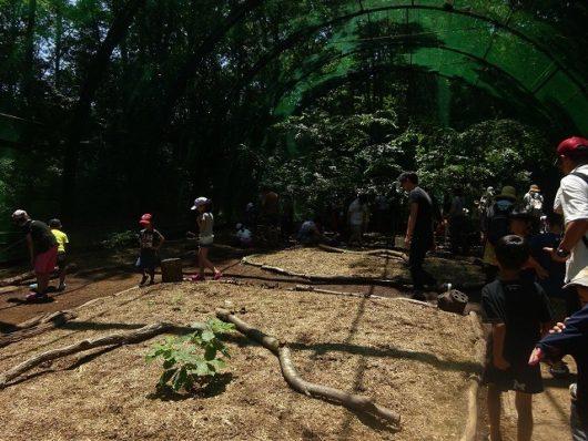 備北丘陵公園 カブトムシドーム (2)