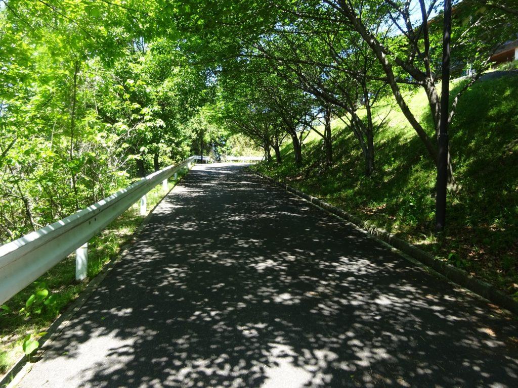 牛田公園 バラ園までの道